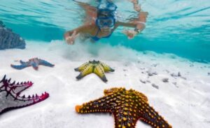 Deportes acuaticos que se practican en las playas de Mexico
