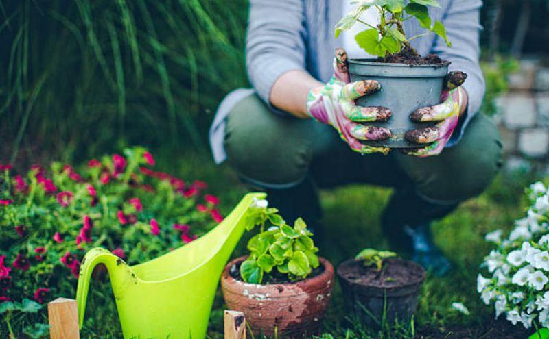 Tipos de jardineros y cuáles son las funciones