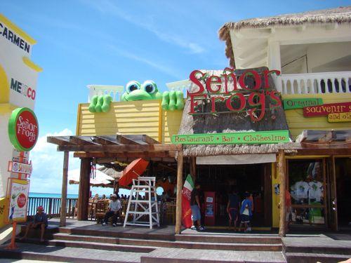 Señor Frogs playa del Carmen